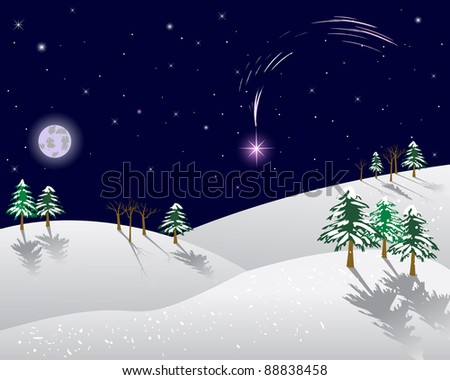 Winter landscape with christmas star on a night sky. Vector illustration.