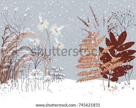 winter landscape with various