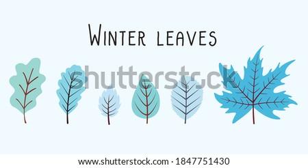 winter leaves wintery garden