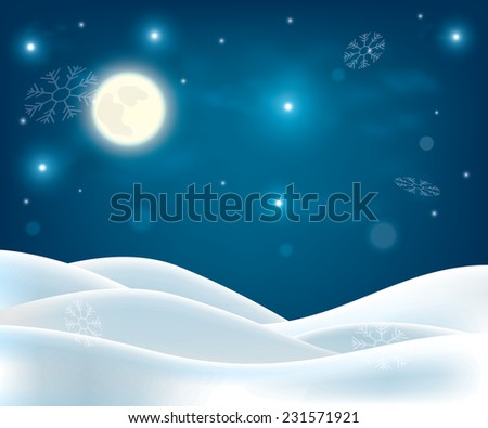 winter night landscape merry