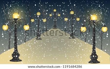 winter  night  park  alley