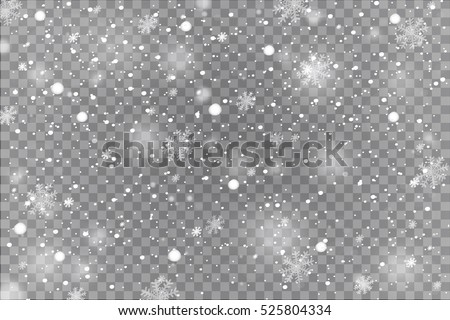 winter with snow in transparent