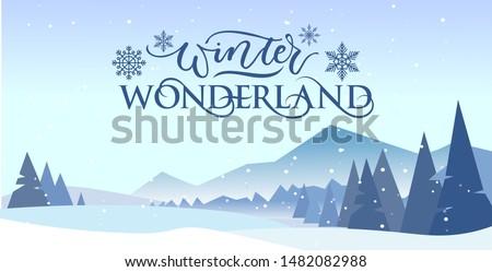 winter wonderland banner vector