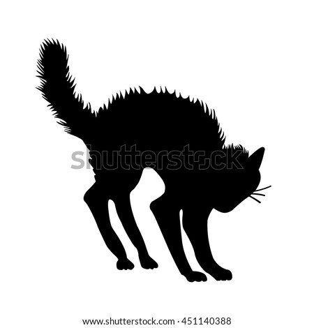 witch cat black vector