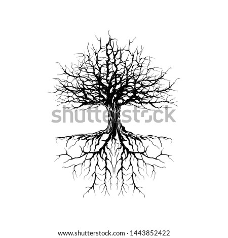 wither tree and roots vector