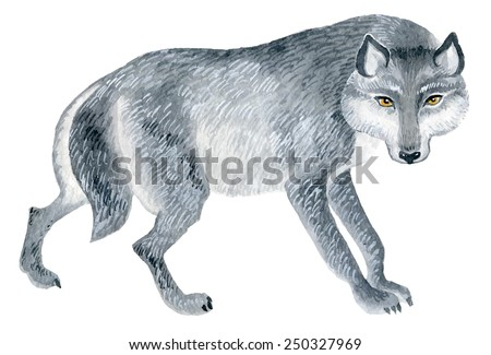 wolf figure - watercolor vector painting