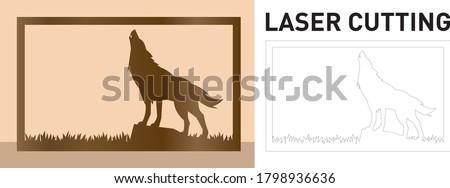 wolf howling in grass field