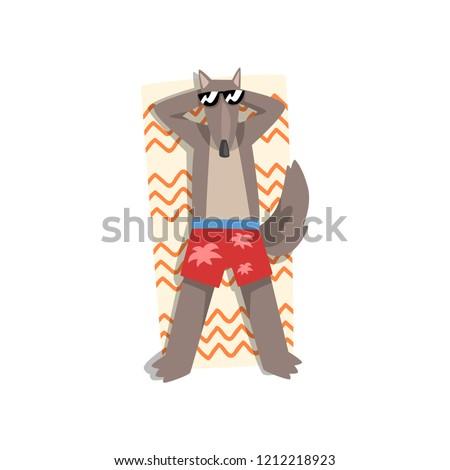 wolf in sunglasses sunbathing