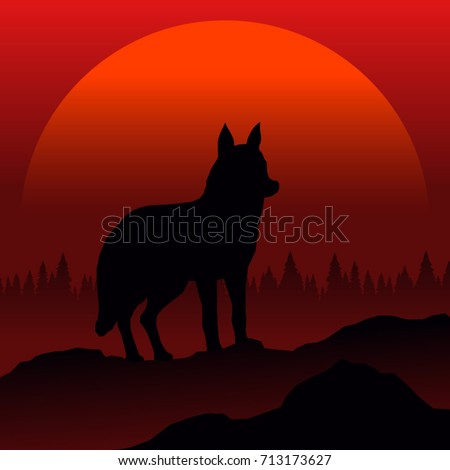 wolf silhouette at sunset