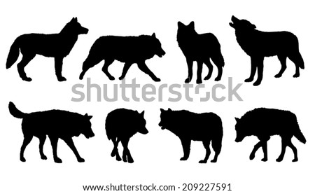 wolf silhouettes on the white