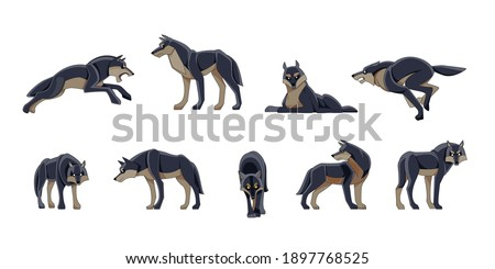 wolves wild animals set of
