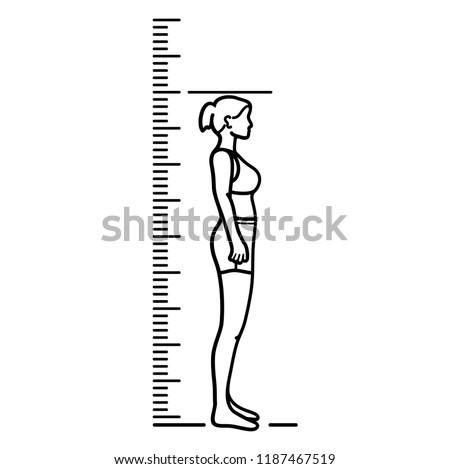 Woman and Height chart. Growth Chart Ruler. Vector flat outline icon illustration isolated on white background.