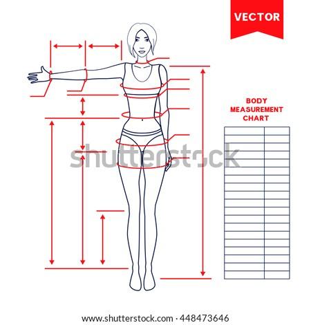 bodybuilding measurement chart - Dolap.magnetband.co