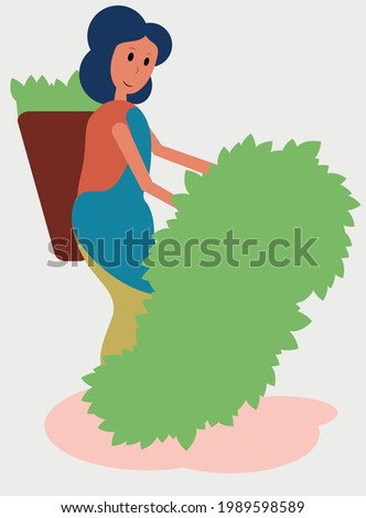 woman collects the top leaves