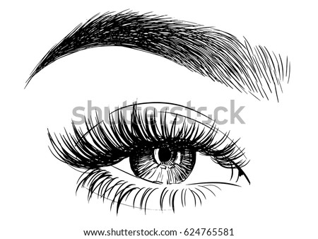 Woman eye with perfectly shaped eyebrows and full lashes