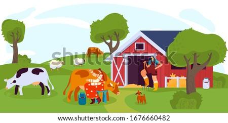 woman milking cow on farm