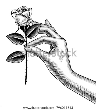 Woman's hand holding a white rose. Retro style valentine greeting card design. Vintage color engraving stylized drawing. Vector illustration