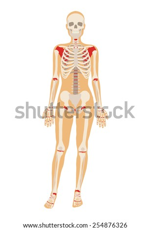 woman skeleton vector flat