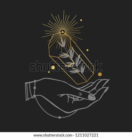 women's hand holding a magic