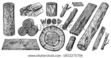 Wood set. Planks and logs, lumber and Cuts, Firewood in vintage style. Pieces of Tree. Vector illusion for signboard, labels, logo or banner. Campfire material. Engraved Hand drawn sketch. ストックフォト ©