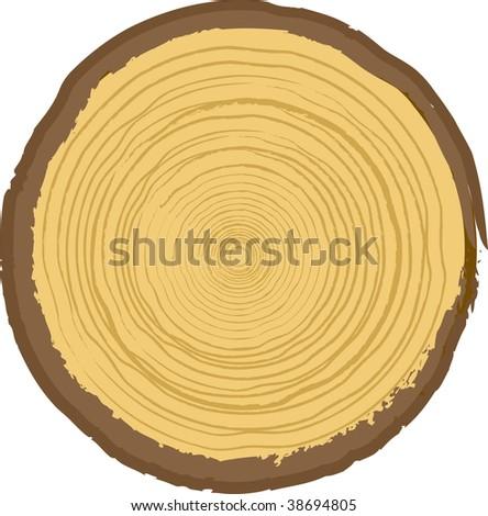 wood texture vector. stock vector : Wood texture.