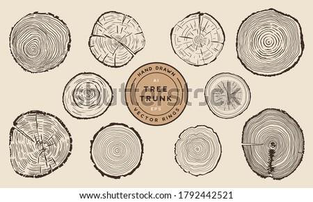Wood Tree Trunk Rings - Hand Drawn Vector Set Stock photo ©