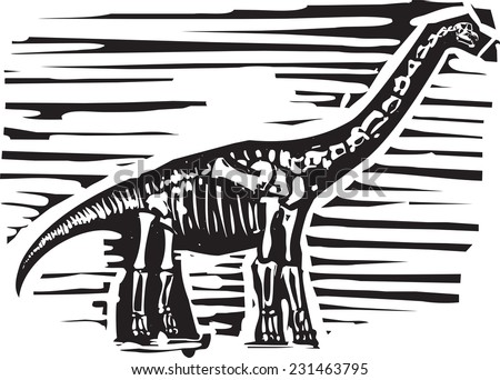 Woodcut style image of a fossil of a long necked Apatosaurus or brontosaurus dinosaur