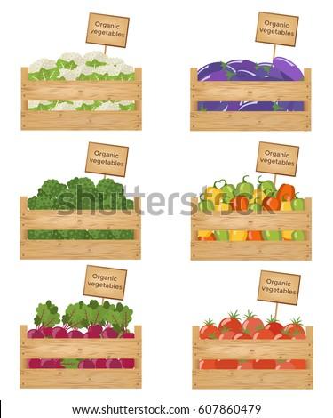 Wooden boxes of vegetables. Organic vegetables. Vector illustration.