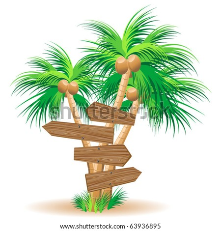 Wooden signboards on tropical palm trees
