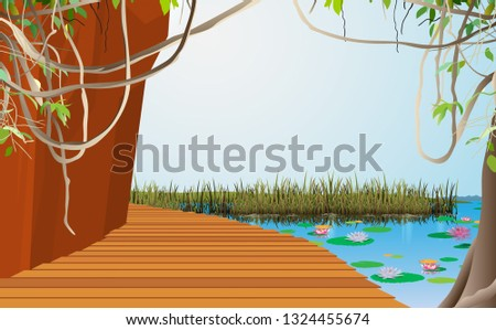 wooden walkway at the cliff in