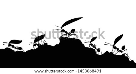 working ants with leaves
