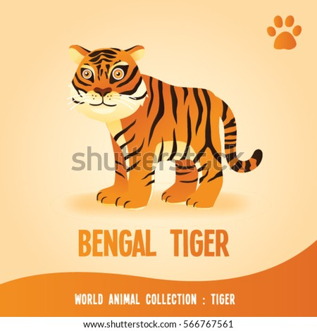 world animal collection   tiger