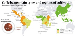 World map. Coffee beans. main types of coffee beans.