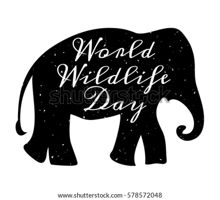 world wildlife day  3 march