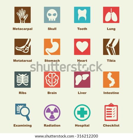 x ray elements  vector