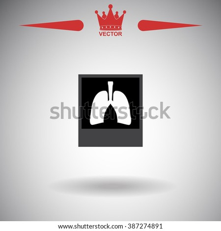 x ray icon x ray icon vector