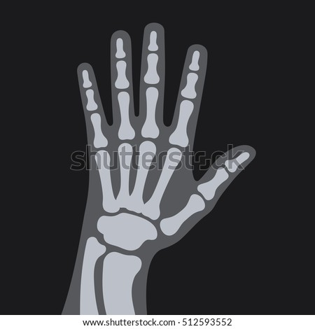 x rays style human hand vector