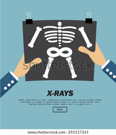 x rays  vector illustration