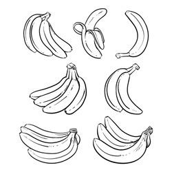 Yellow Bananas vector illustration on white background. Overripe Banana, Single Banana , Peeled Banana, Bunch of Bananas.