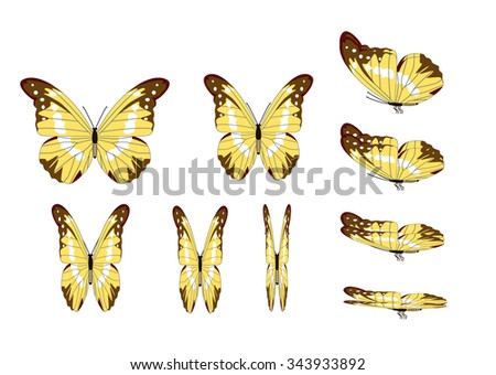 yellow butterfly animation