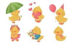 Yellow Chicken Holding Heart and Walking with Umbrella Vector Set