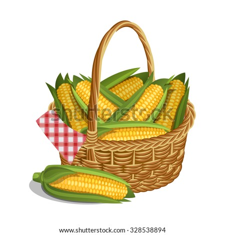 Yellow corn in basket, isolated on white. Vector illustration