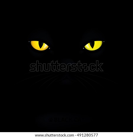 Stock Photo Yellow eyes in the night. Black cat on a black background. Vector