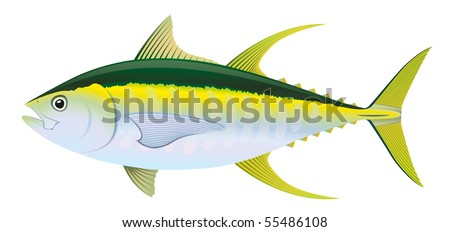 """Yellow fin Tuna (Thunnus albacares) saltwater fish. """"Full compatible. Created with gradients."""""""