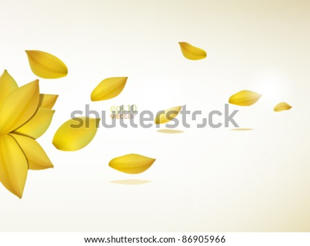 yellow flower petals on a wind