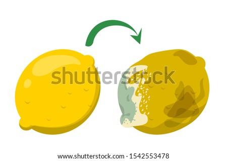 Yellow fruit lemon become rotten and bad. Citrus organic food, garbage. Sweet healthy lemon rot. Foto stock ©