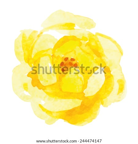 yellow rose flower watercolor