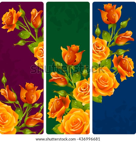 yellow rose frames vector set