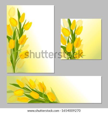 yellow tulips tulips beautiful