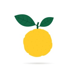 yellow yuzu fruit icon with shadow. cartoon flat style trend modern logotype graphic art design isolated on white background